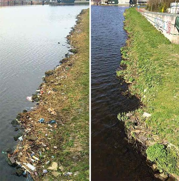 dutch man cleans up entire bank of river on way to work