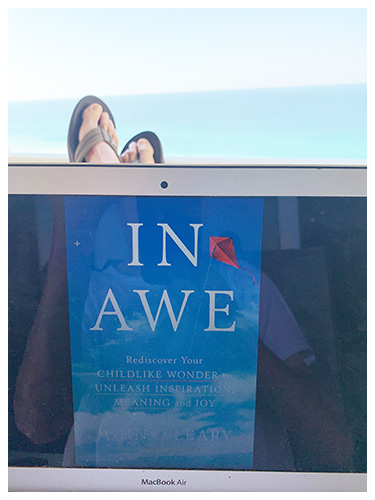 Finish Line and In Awe Book